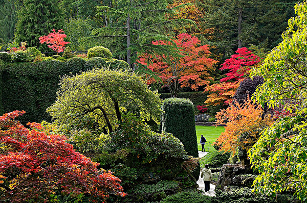 图片标题 人 宝翠花园 温哥华岛 不列颠哥伦比亚省 加拿大
