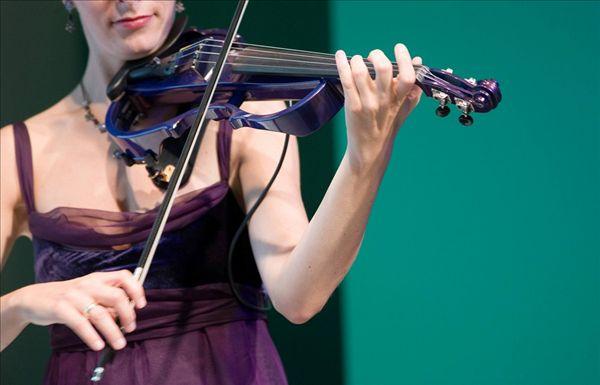 电子小提琴-求2b拉琴图片