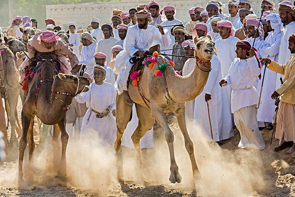 中东,阿拉伯半岛,阿曼苏丹国,传统,赛骆驼,两个人,阿曼,庆贺,骑手