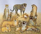 大型猫科动物,丙烯酸树脂