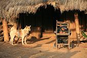 云南思茅地区孟连县芒信乡海东村芒旧新寨的哈尼族一个孩子清晨在草房前学习写字。