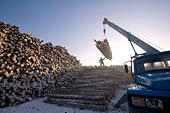 雪中木材厂