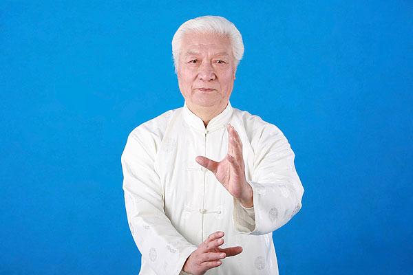 一个白发苍苍的中国老人正在打太极拳