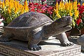 中国香港雕塑乌龟