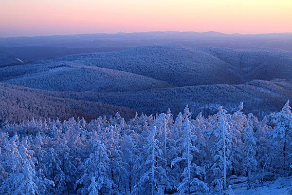 大兴安岭森林雪景-全景图片-读图时代