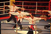 蔡李佛/江门,武行天下,蔡李佛拳对泰拳,武术,散打