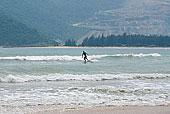 滑板 海洋/海洋,滑板下载相似预览购买...