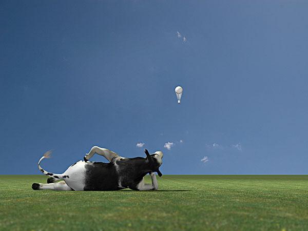 奶牛图片背景素材