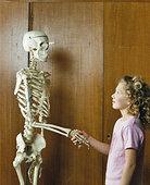女生,握手,人体骨骼