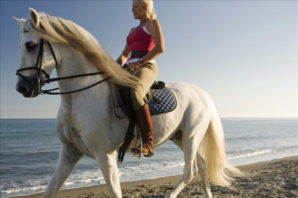骑 马 海滩