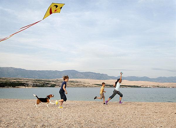飞,风筝,海滩