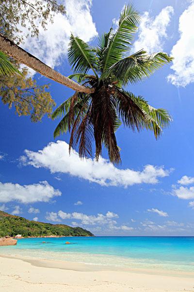 海洋中的小岛俯视图