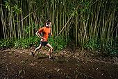 男人,跑,途中,竹林