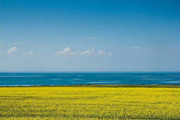 青海湖图片大全