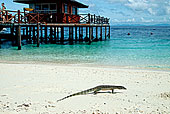 马来西亚,诗巴丹,海边,风景