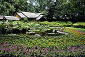 江苏苏州园林风光