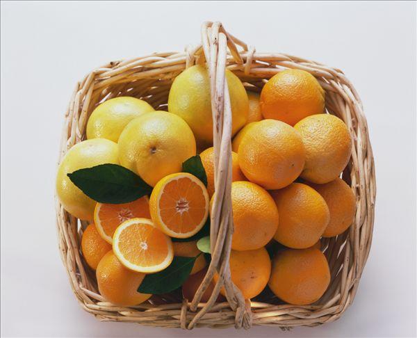 柑橘图片美食_柑橘图片美食图片大全