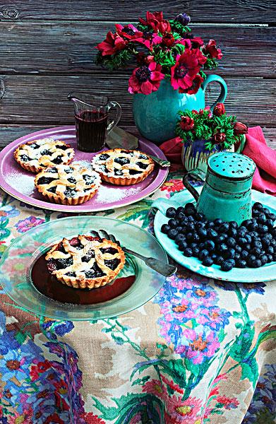 蓝莓派_全景图片