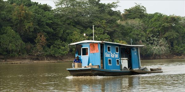 潘塔纳尔,世界遗产,生物保护区,巴西