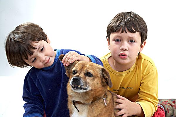 图片标题:孩子,狗