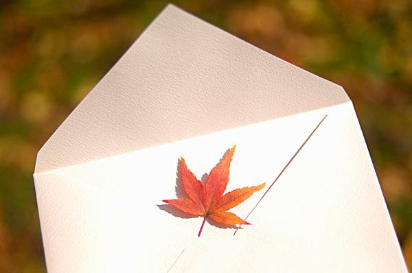 信封设计-信封设计图片下载-信封设计图片大全-全景
