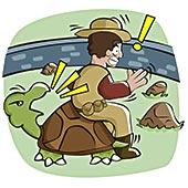后视图,一个,男人,坐,龟