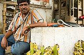 男人,销售,香蕉,迈索尔,印度