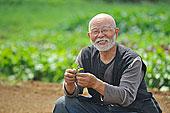 农民,叶子,看镜头,微笑