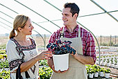 男青年,建议,女性,顾客,盆栽,植物培育