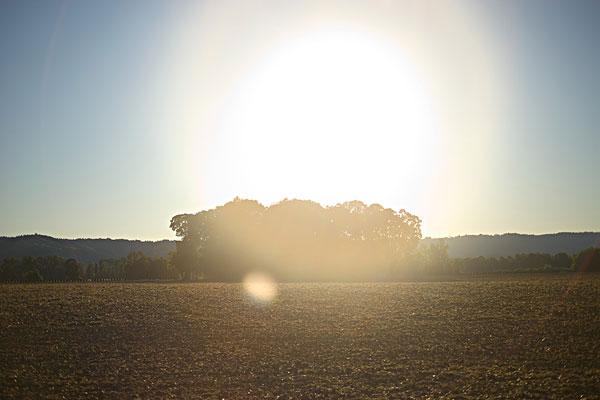 我喜欢分 享 标签: 乡村,夏天,风景 描述: 农村景观夏天 摄影师