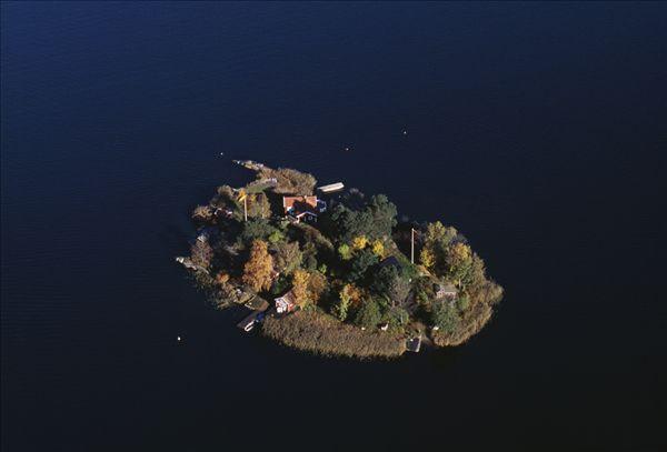 房子_树_岛屿_俯视图