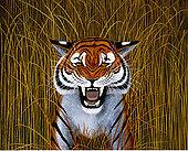 插画,虎,高草
