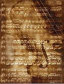 小提琴,乐谱