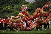 舞龙,中国节日,新加坡