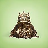 青蛙王子与冠