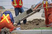 工人,倒出,水泥,修路,场所,卡尔加里,艾伯塔省,加拿大