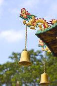 佛,庙宇,锡,香港,中国