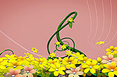 花,茎,标识