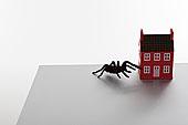 蜘蛛,迷你,建筑,书桌