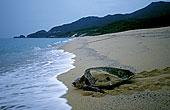 头部,海洋,日本