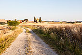 乡村道路,观,大麦域在夏天,托斯卡纳,意大利