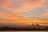 日落,河,望濑,缅甸
