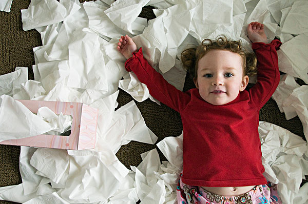 头像,小女孩,玩,纸巾盒,俄勒冈,美国