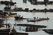 工人,河岸,望濑,传说,区域,缅甸