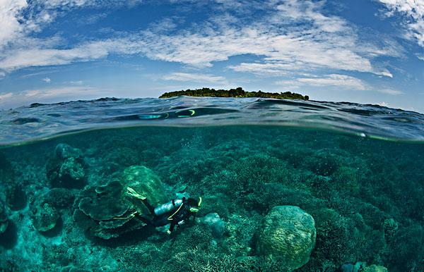 错层式房屋,潜水,珊瑚