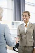 职业女性,握手,办公室