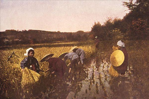 农民女人生活照