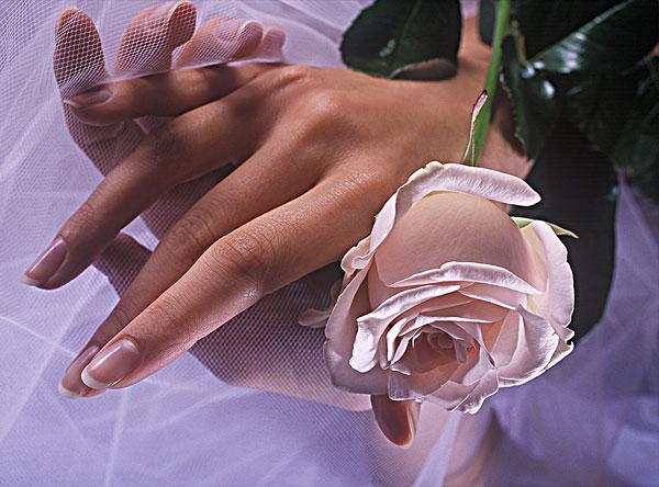 手拿黑玫瑰头像图片大全