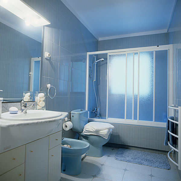 浴室,地砖,蓝色,卫生间,坐便器,正面,淋浴