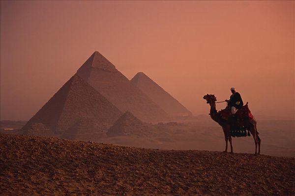 骆驼沙漠金字塔